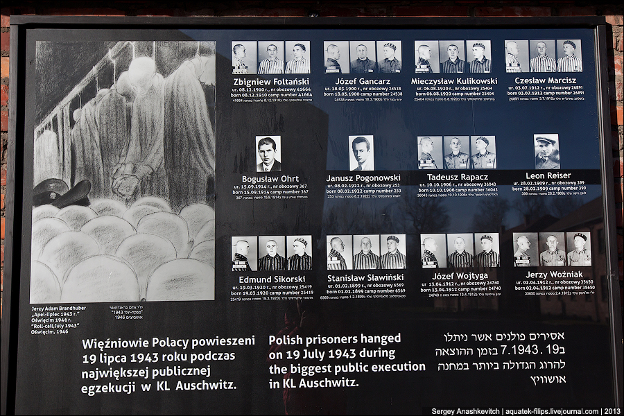 Нацистские бараки ада. Концлагеря Аушвиц и Аушвиц-Биркенау