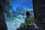2012-10-27 11-22-55_0160.JPG