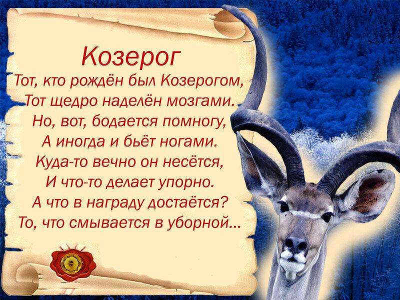 Картинки гороскоп про козерога