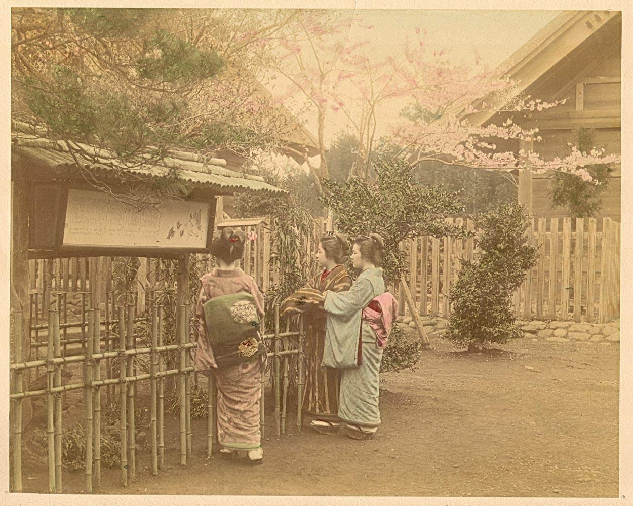 Три женщины у изгороди
