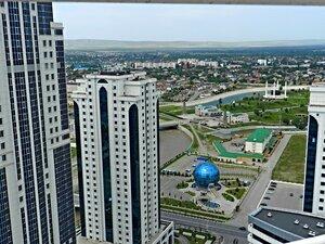 Вид на Грозный с вертолетной площадки небоскреба