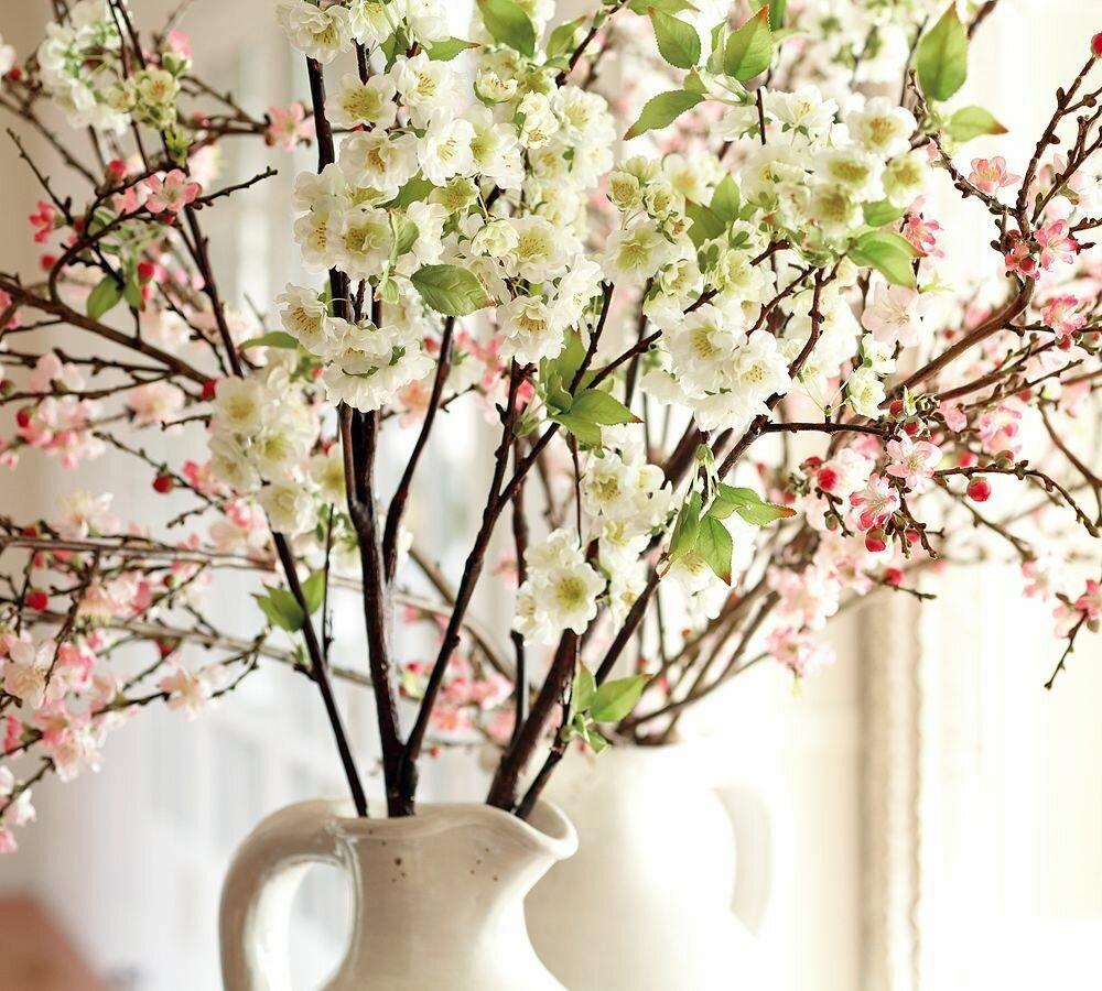 такие разные, картинки весенних веточек и цветов ивану
