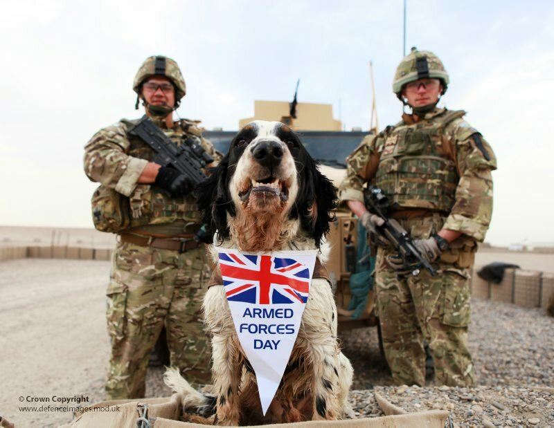 Memphis the Military Working Dog Supporting Armed Forces Day
