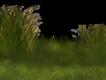 Lug_Grass_Flower (66).png