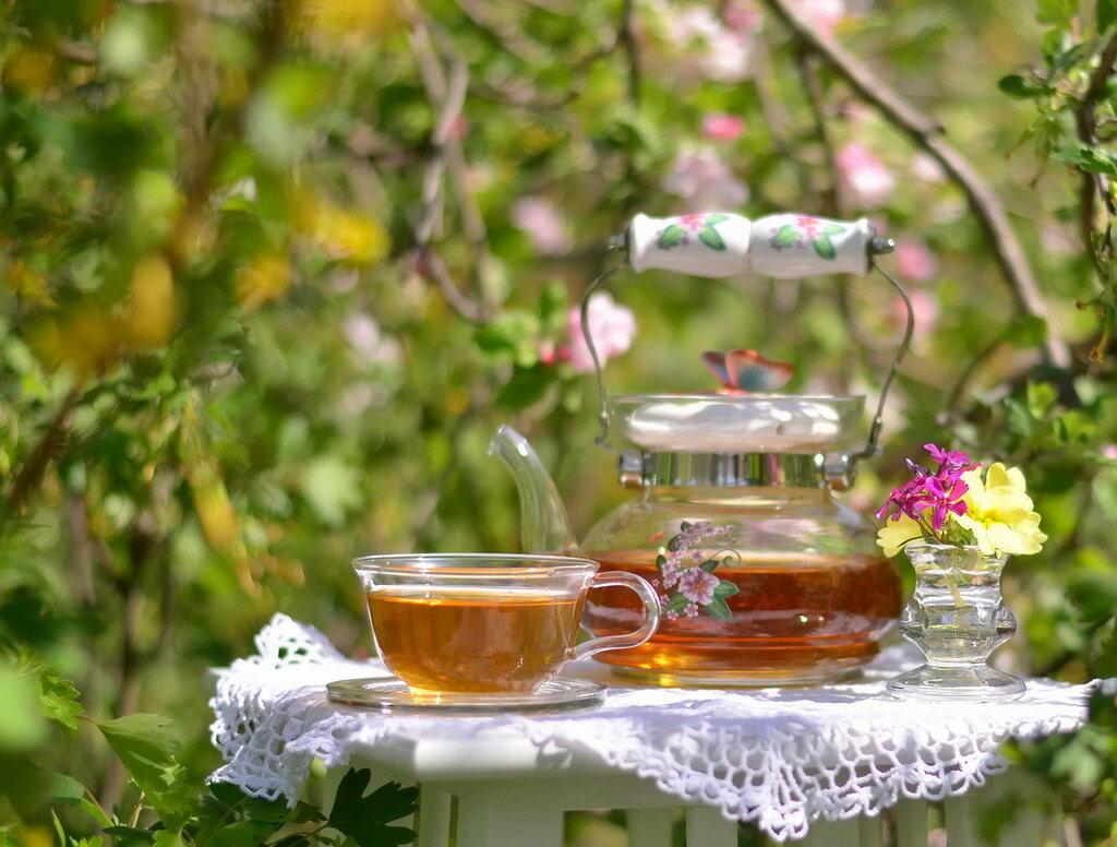 Чайная церемония весны