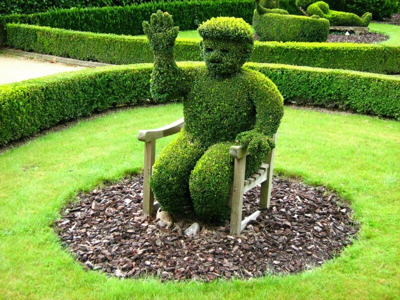 Топиари – зеленое искусство