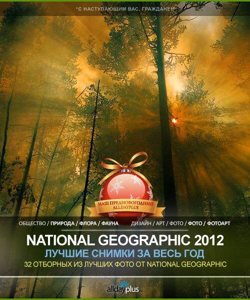 Лучшие фотографии от National Geographic  за 2012 г. | 32 шт.