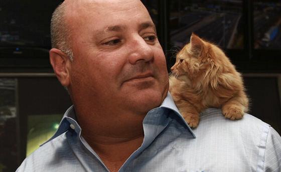 Маленький котенок был спасен из туннеля в Мельбурне