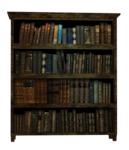 bookshelves21.png