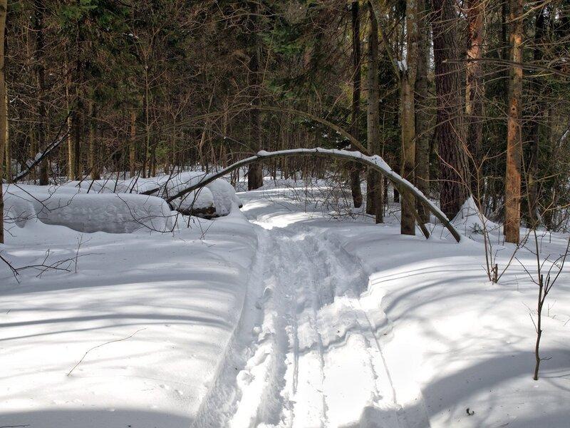 Арка на лыжне в Заречном