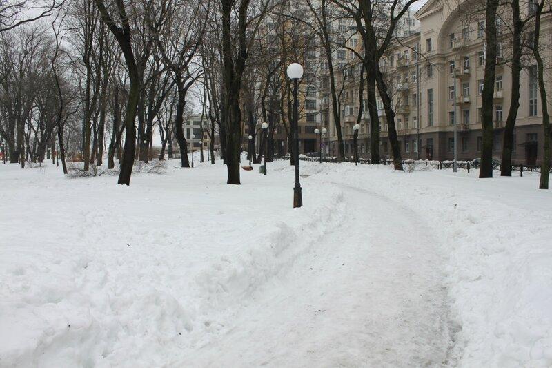 Аллея Мариинского парка под снегом