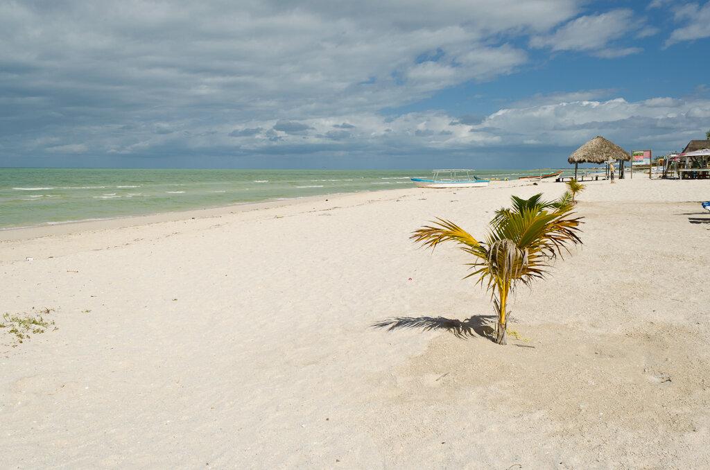 Мексиканский залив в поселке Селестун (Celestun). Самостоятельная поездка на машине из курорта Канкун