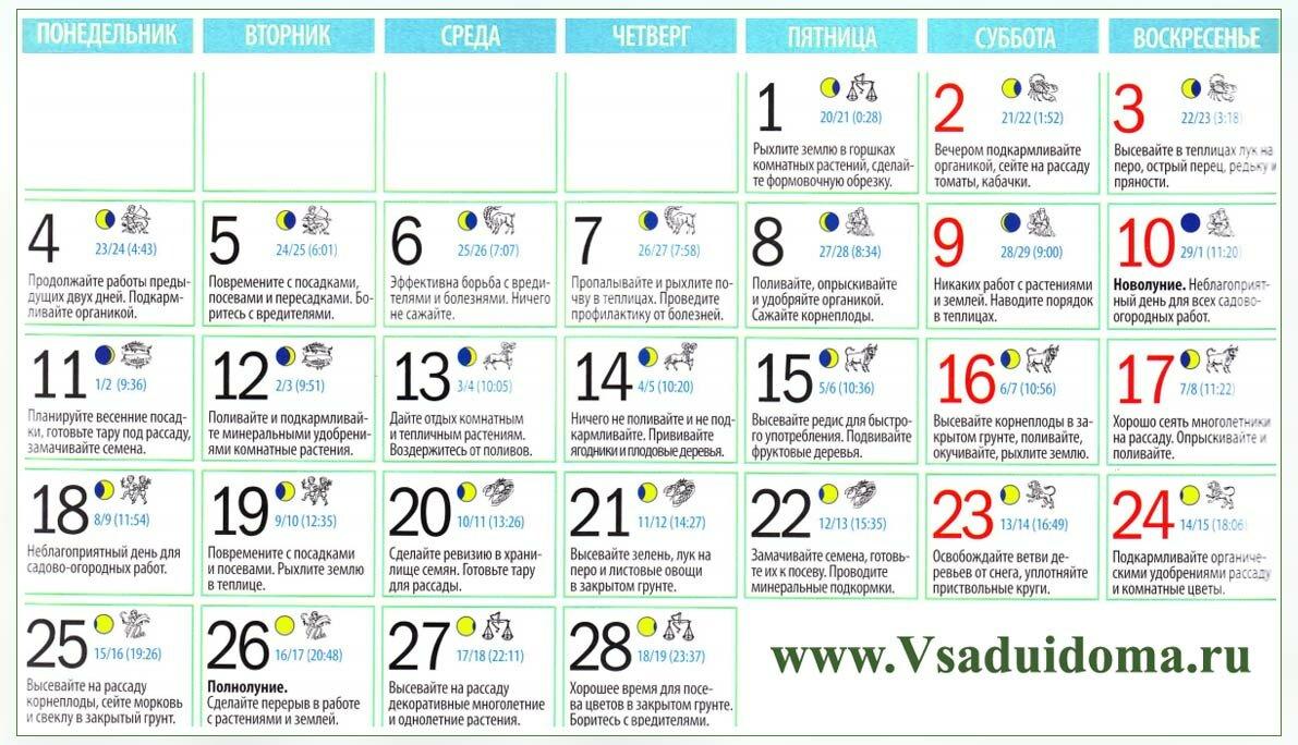 Календарь работ в саду, огороде и на даче на январь и февраль