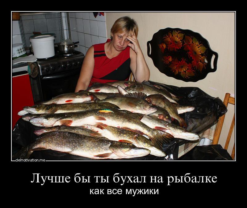 Лучше бы ты, как все, пил водку на рыбалке!