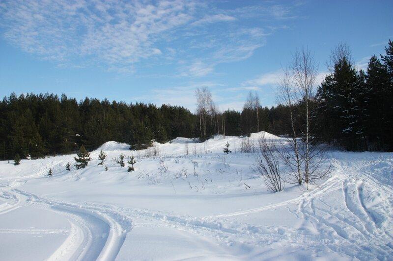Зимний лес, лыжня, лыжная прогулка