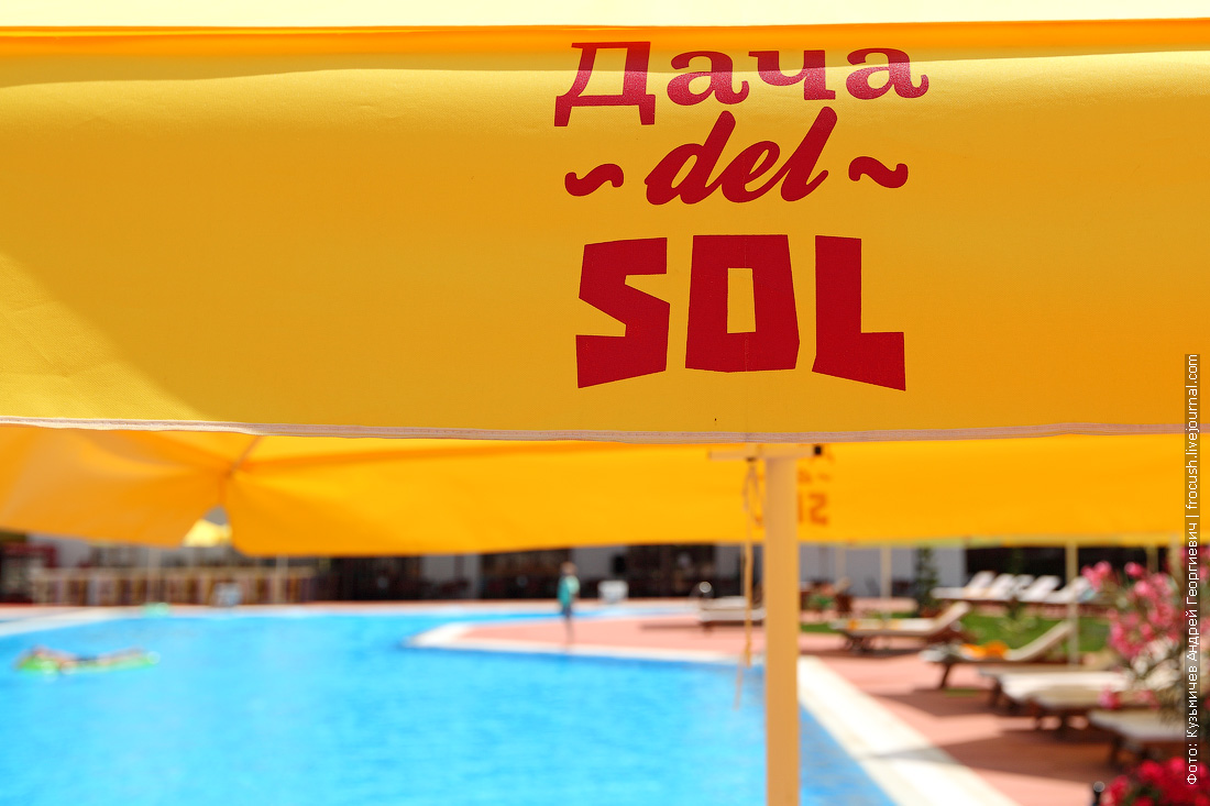дача дель соль логотип