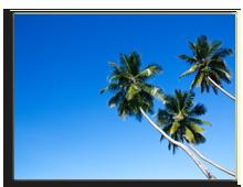 Сейшелы. Three palm trees. Фото Elena Kozlova - Depositphotos