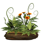plant_stock_2_by_collect_and_creat-d5tt0wh.png