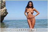 http://img-fotki.yandex.ru/get/5629/169790680.15/0_9daeb_85475afc_orig.jpg