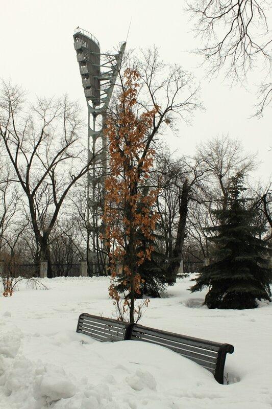 Снег на парковой скамейке