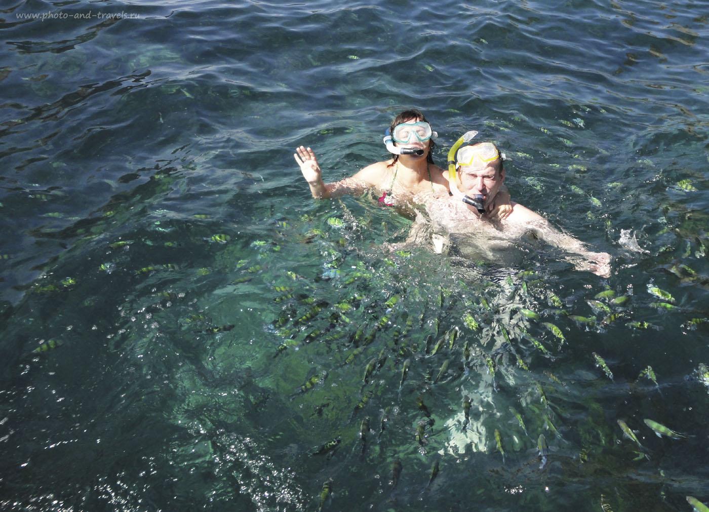 Фотография 3. Если вы приехали в Краби впервые, можно купить экскурсию на 4 острова. Увидите за один раз много красот. В другие дни, если стоит задача отдохнуть в Таиланде недорого, можно отправиться на остров Пода (Koh Poda). В отчете за 2015 год рассказал, как попасть в это райское место самостоятельно.