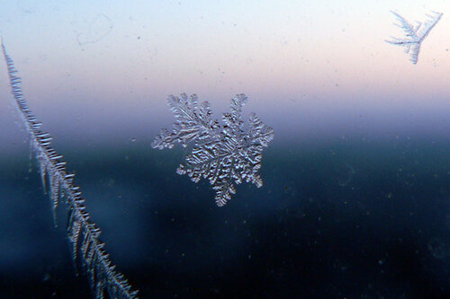 чудо на стекле снежинка