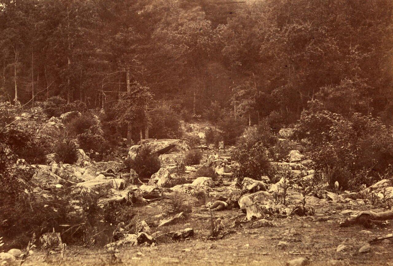 Бойня у подножия Round Top (один из холмов Кладбищенского хребта) во время битвы при Геттисберге. Пенсильвания. Июль 1863 г.