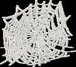 ial_fl_sf_spiderweb.png