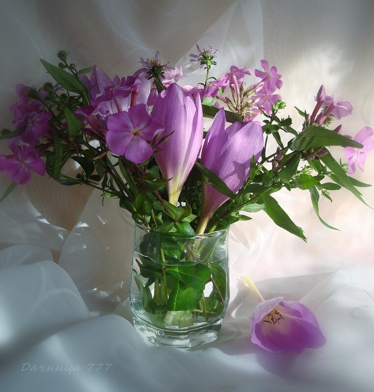 Поздние цветы...