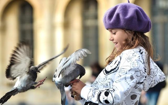 «Только ты не молчи, ясноокая мудрая птица...»