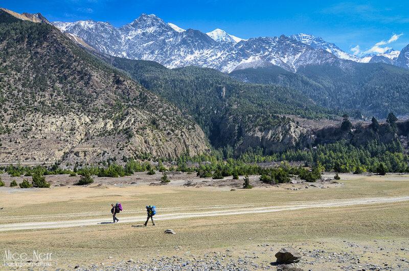 люди с цветными рюкзаками топают в Марпу, Гималаи, Непал