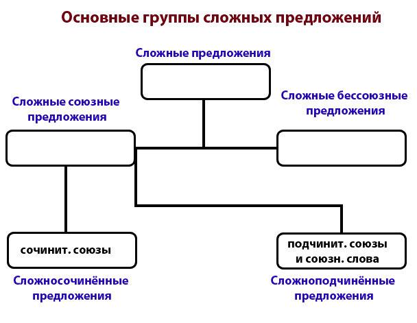 схема: основные группы сложных предложений