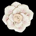 adelina_aliya_flower2.png