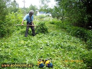трава на удобрение