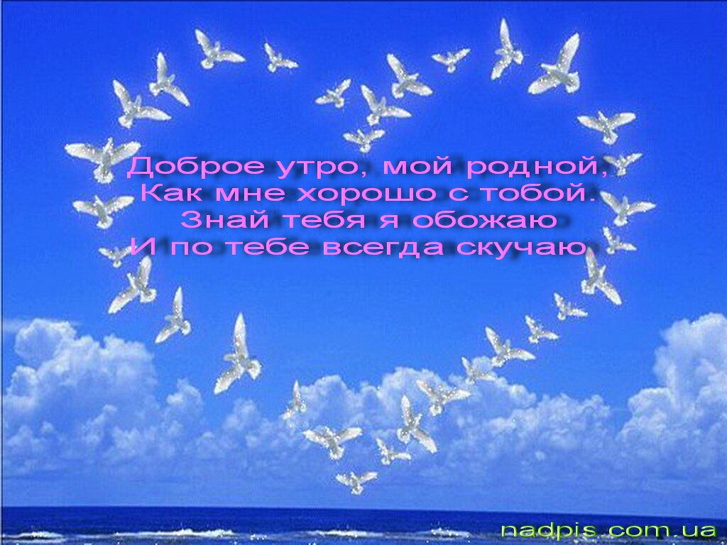 Я целую тебя  Перевод на английский  примеры русский