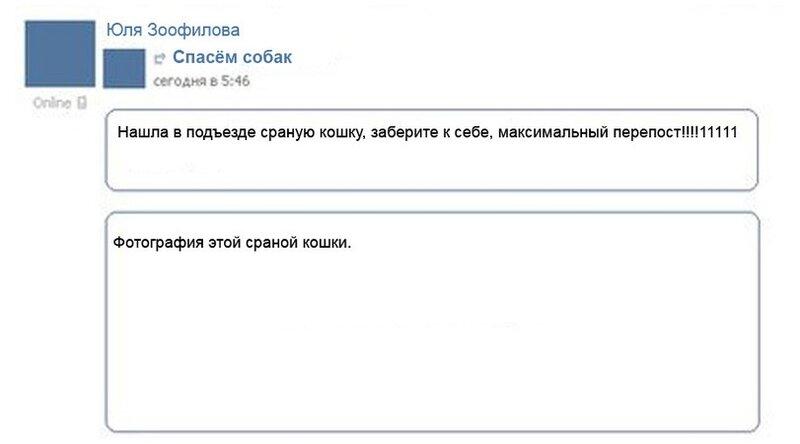 Как выглядит стандартная лента вконтакте