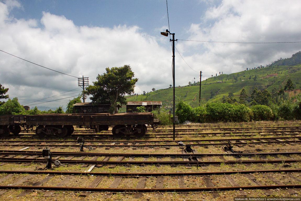 Шри-Ланка_Железная дорога_03