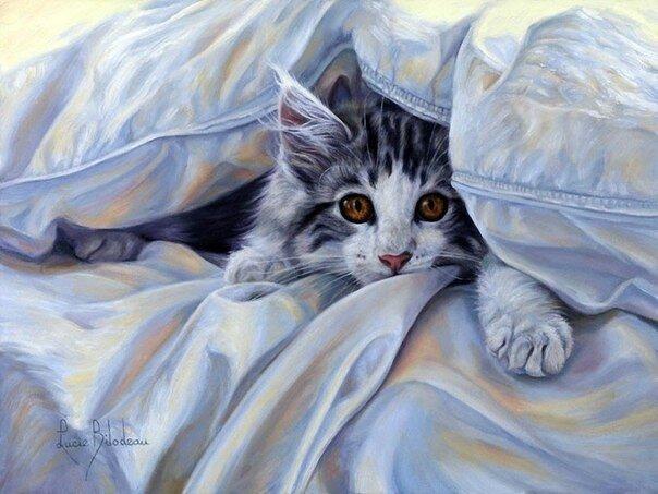 Если в доме нет кота. Lucie Bilodeau