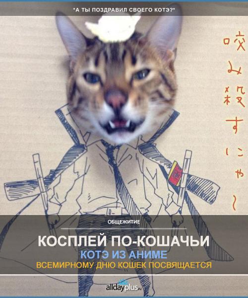 Кошачий косплей. В честь Дня кошек, весны и пятницы!