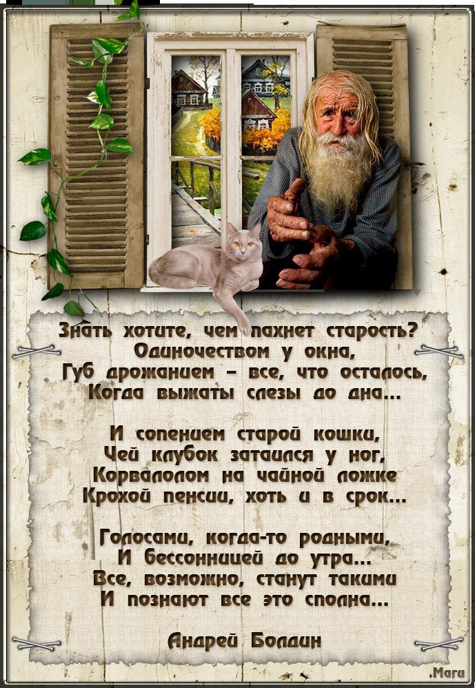 Ковдоре две стихи про дом престарелых будущая планировка