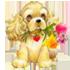 Награды и подарки 0_ba8b5_5d8adf7f_orig