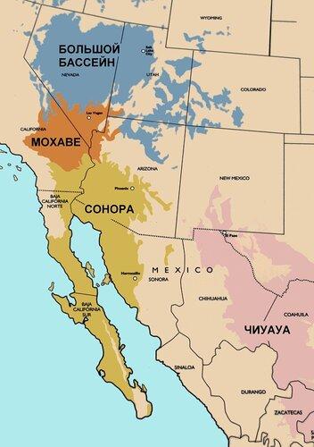 Пустыни Северной Америки