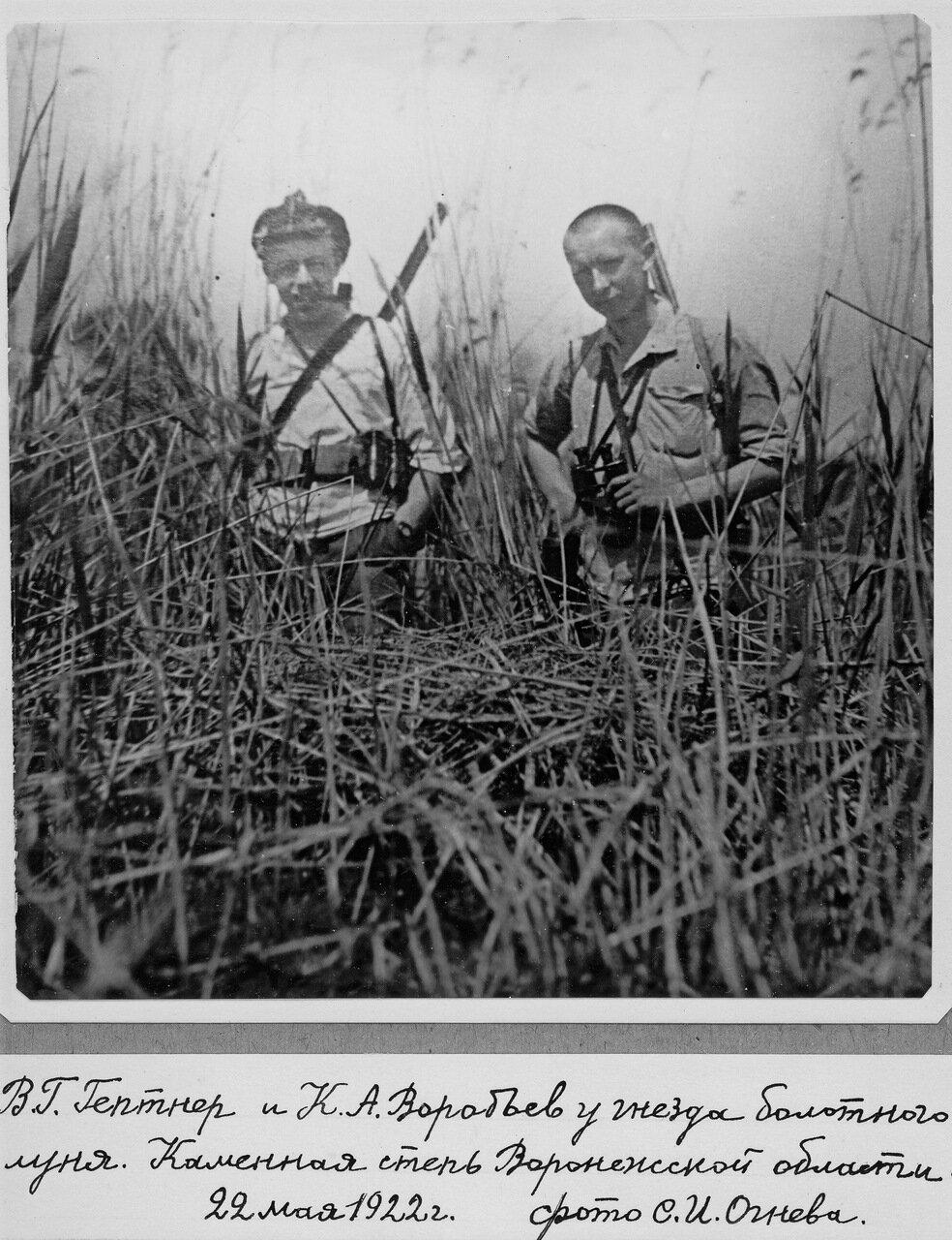 1922. Студенты Воробьев и Гептнер - будущие крупные отечественные зоологи