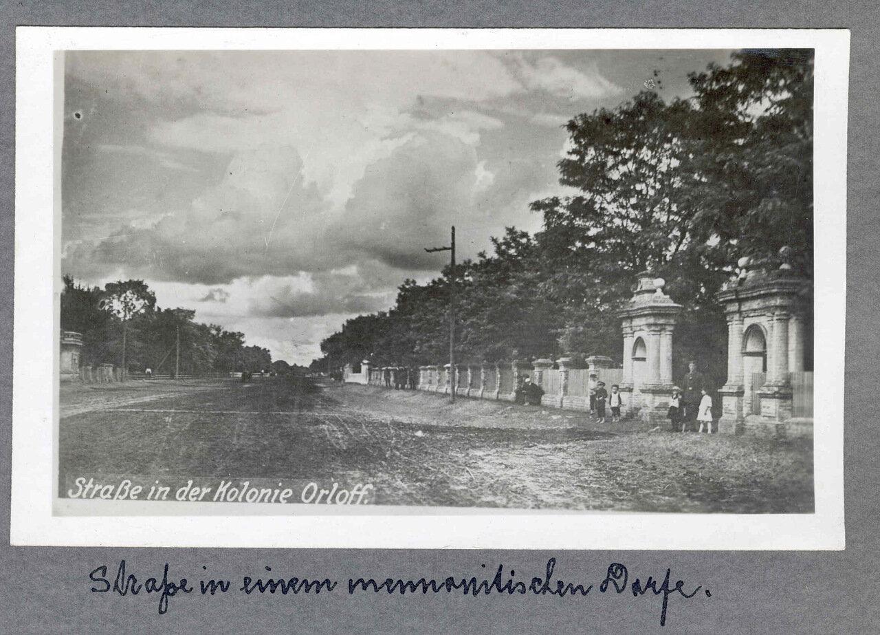 Улица в колонии Орлов