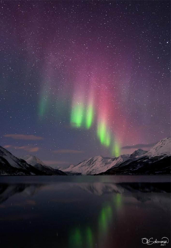 Northern Lights (Aurora Borealis / Arctic Light)