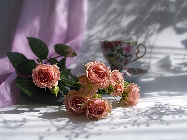 розы и кофе с утра.jpg