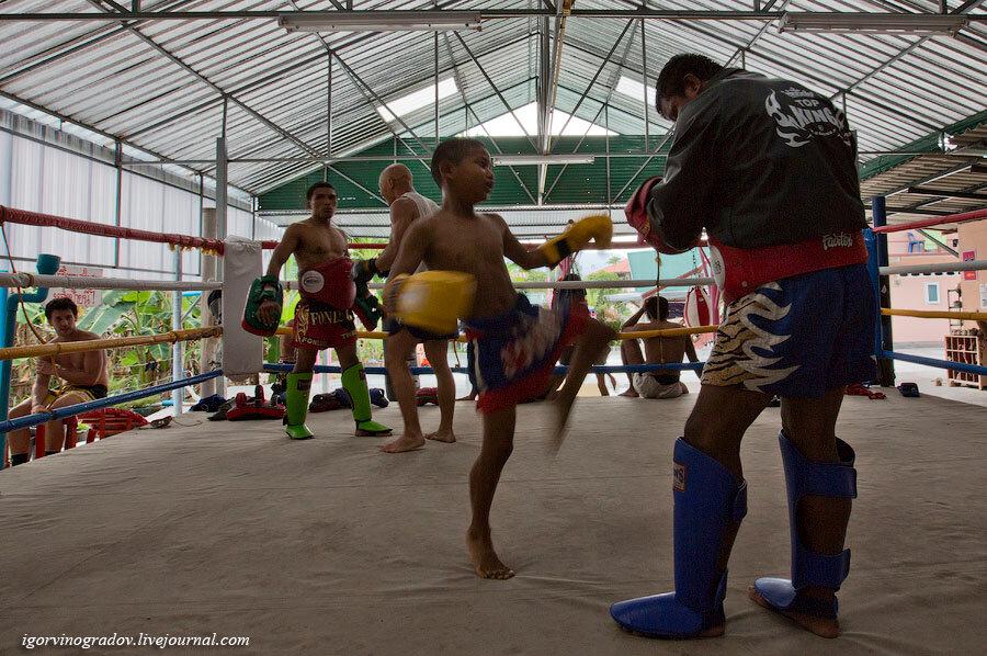 Тайский бокс, на тренировке.: igorvinogradov