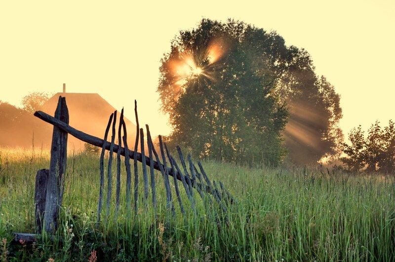 ночевало в огороде   ***