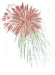 mds7706 Fireworks.png