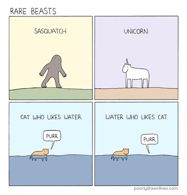 Смешные комиксы про котов на английском языке 0 c6d8d d1760a83 orig